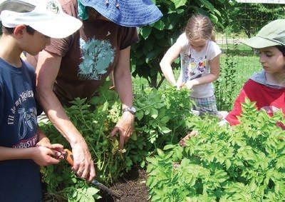 Kids at Rutgers Gardens